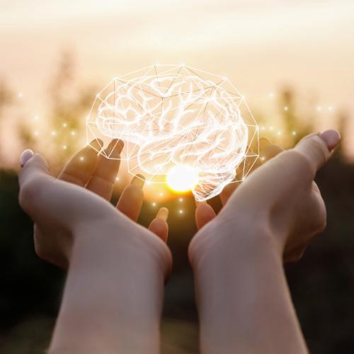 hoogsensitief brein